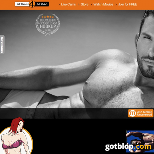 Gay hookup sites like adam4adam